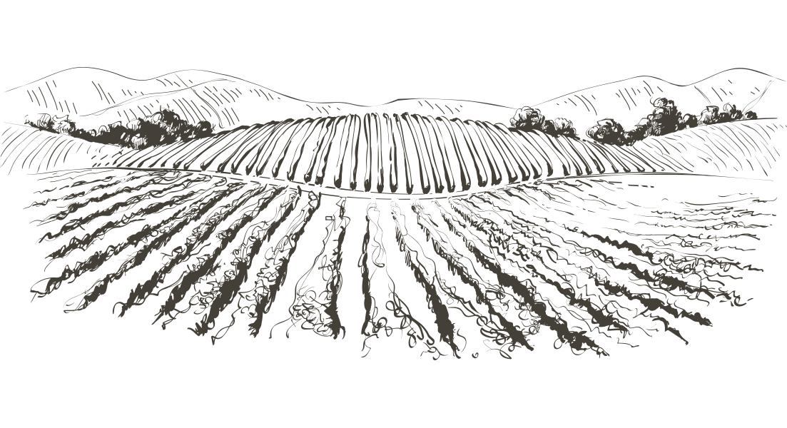La carte des vins de L'Almandin
